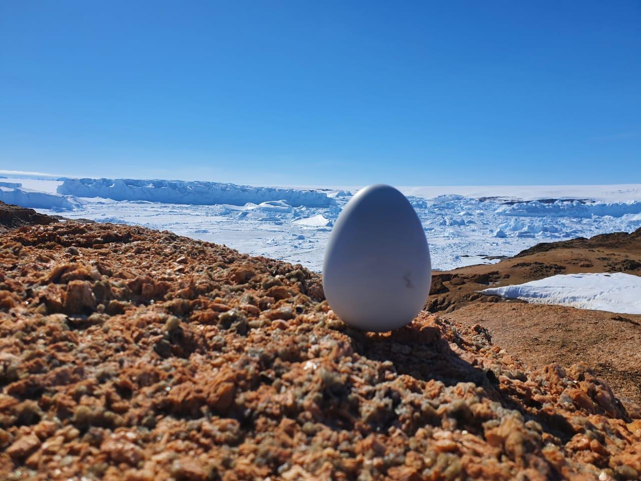 МТС обеспечил интернетом вещей Антарктику 1